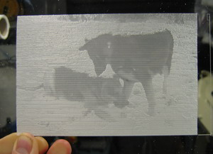 Photo Lithopane Engraving